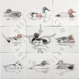 Ducks On Tiles (HDE2)