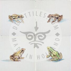 Frogs Amphibian Tile (HKI)