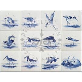 Sea Ocean Birds Tiles (HVS)