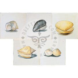 Shell Tiles Color (HDS_mc)